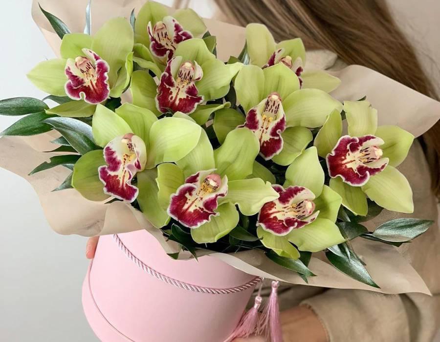 6 секретов правильного ухода за орхидеями